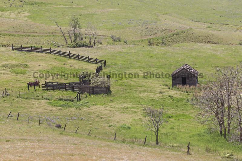 Abandoned House 426