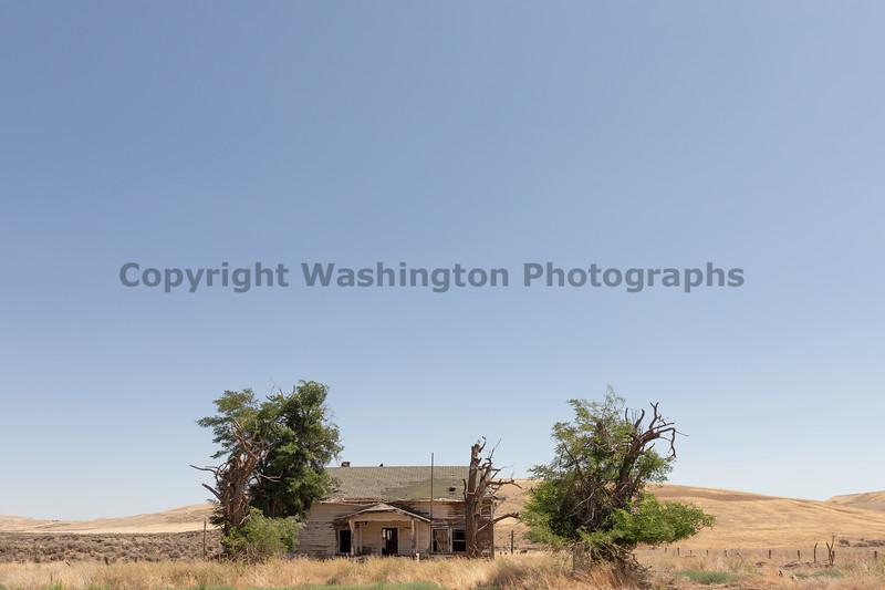 Abandoned House 471
