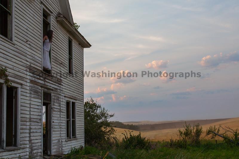 Abandoned House 259