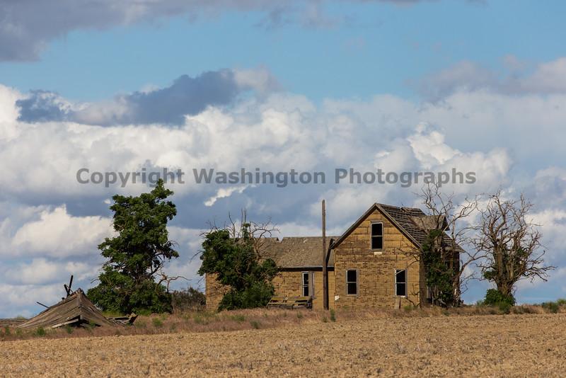 Abandoned House 307