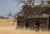 Abandoned House 187