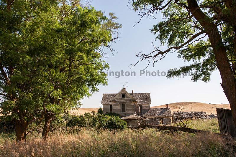 Abandoned House 235