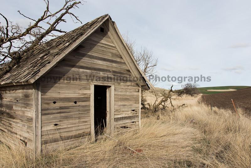 Abandoned House 131