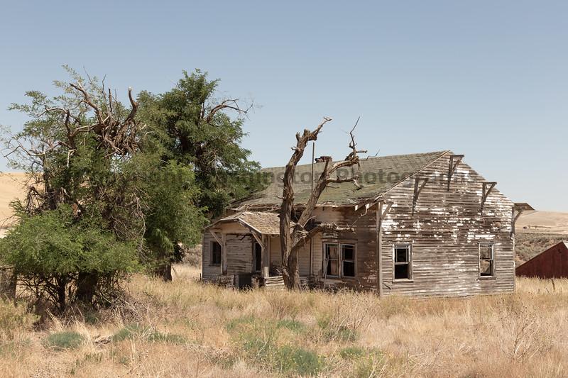Abandoned House 467