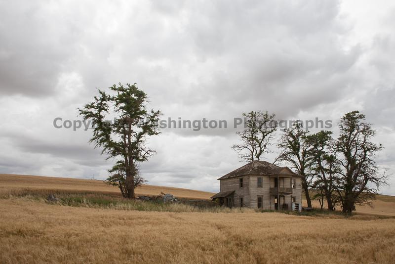Abandoned House 284