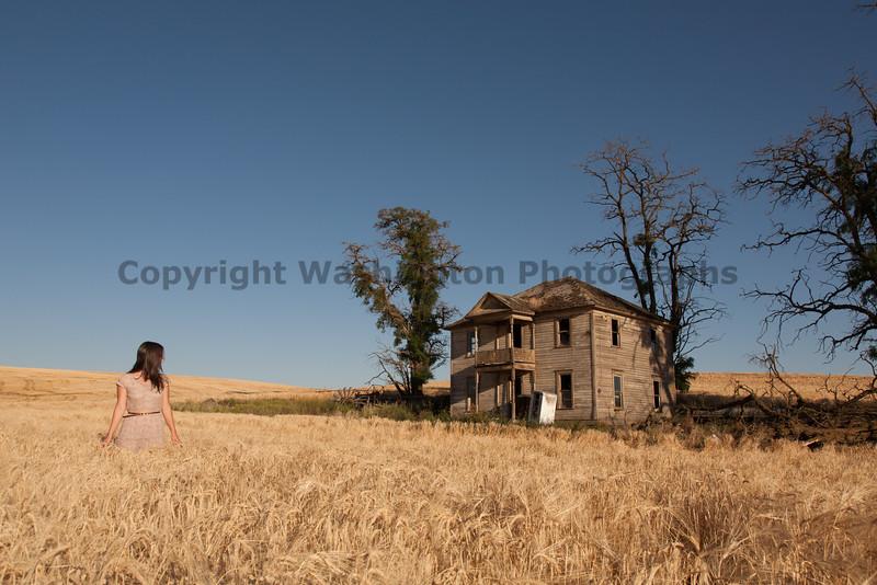 Abandoned House 228