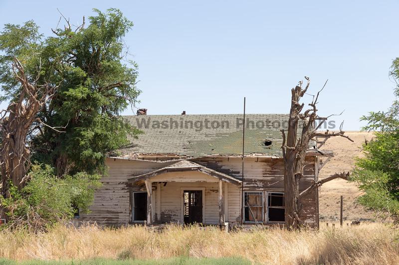 Abandoned House 469