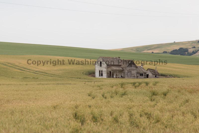 Abandoned House 443