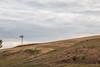 Abandoned Windmill 18