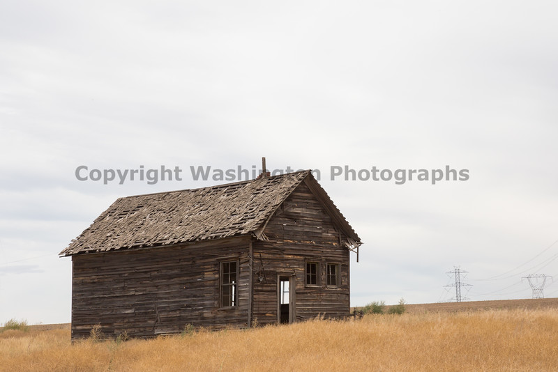 Abandoned House 393