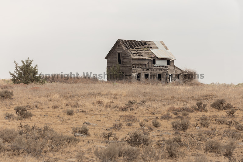 Abandoned House 486