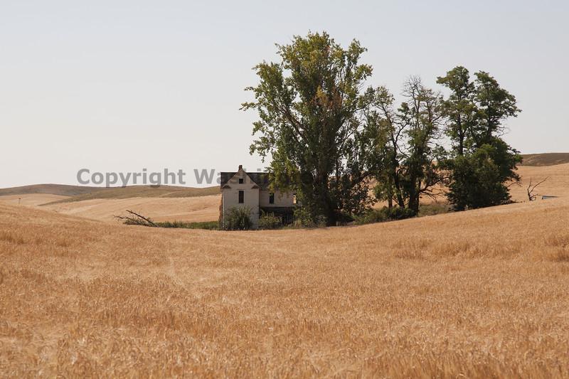 Abandoned House 240
