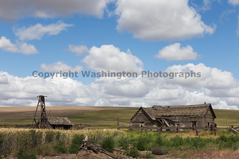 Abandoned House 335