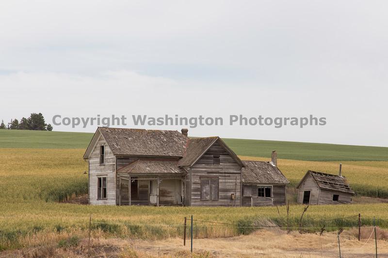 Abandoned House 431