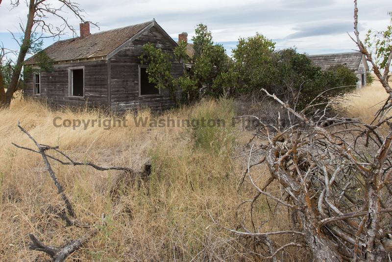 Abandoned House 409