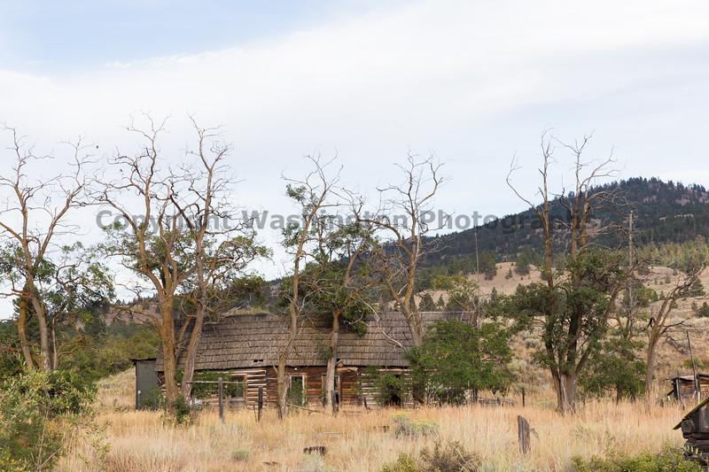 Abandoned House 382
