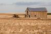 Abandoned Barn 013