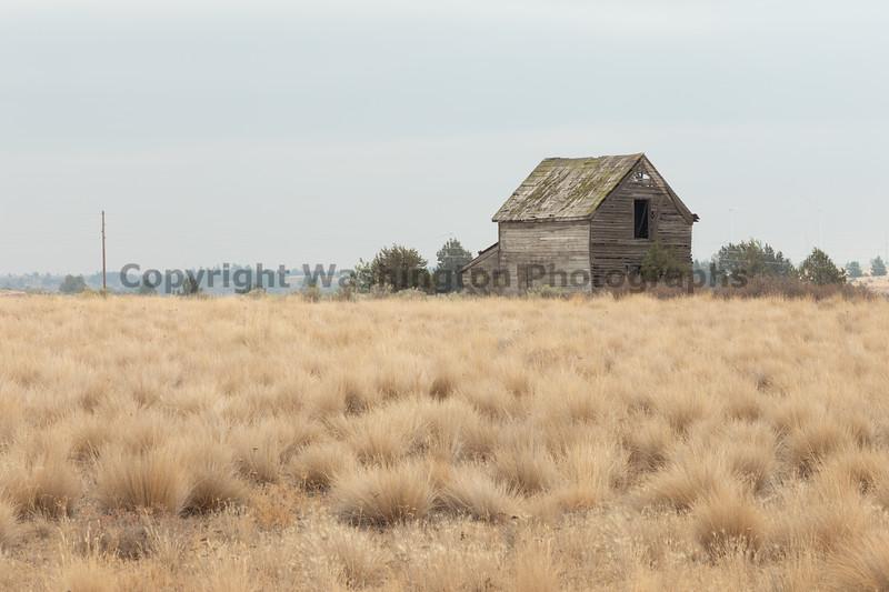 Abandoned House 483
