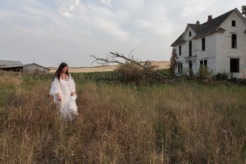 Abandoned House 241