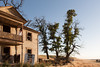 Abandoned House 231