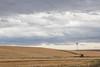 Abandoned Windmill 16