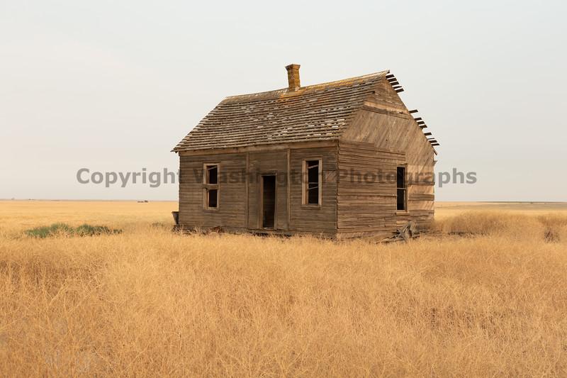 Abandoned House 460