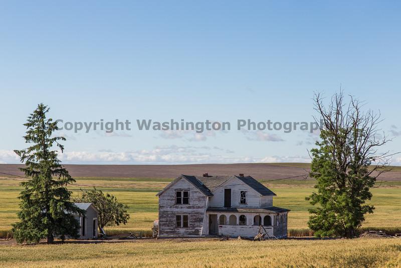 Abandoned House 329