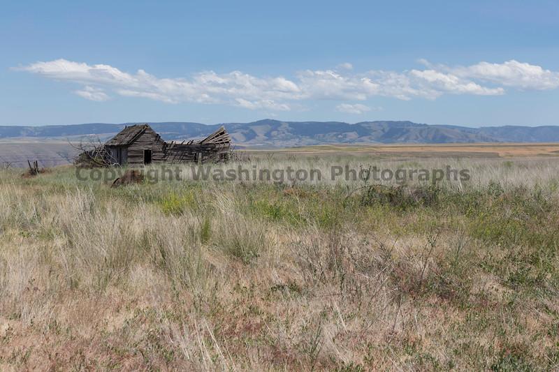 Abandoned House 449