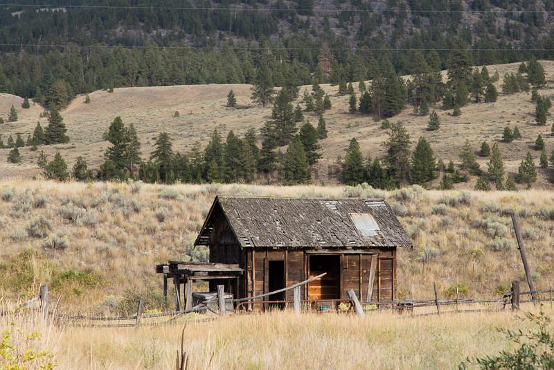Abandoned House 384