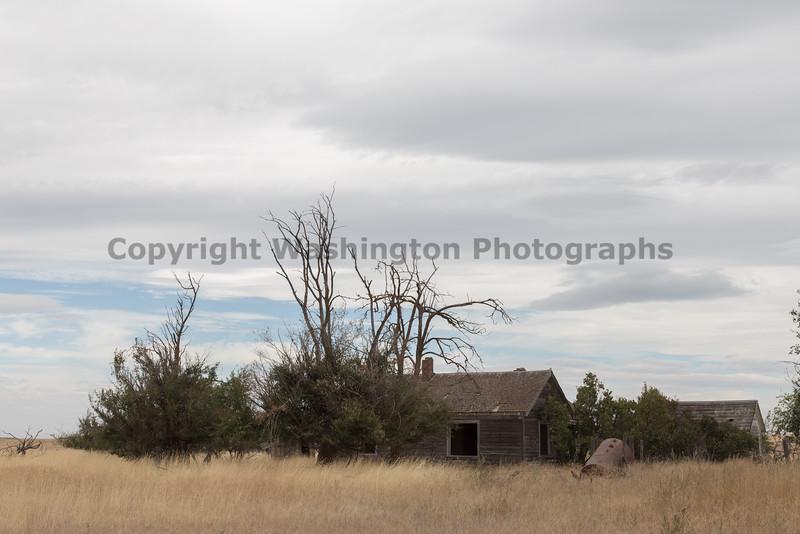 Abandoned House 412