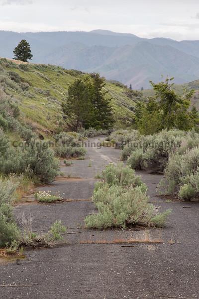 Abandoned Road 21