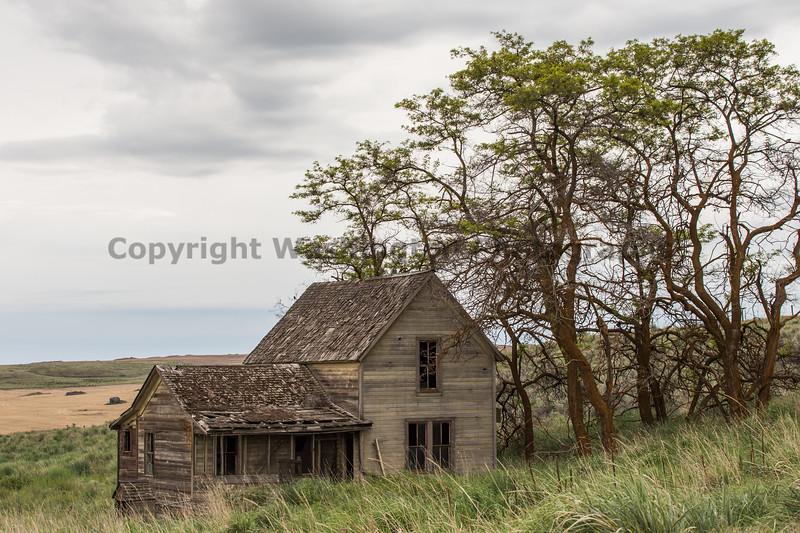 Abandoned House 36