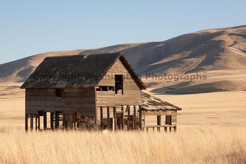 Abandoned House 213