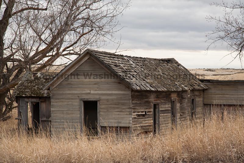 Abandoned House 216