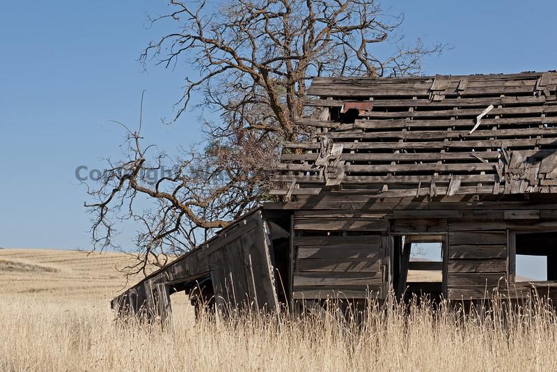 Abandoned House 013