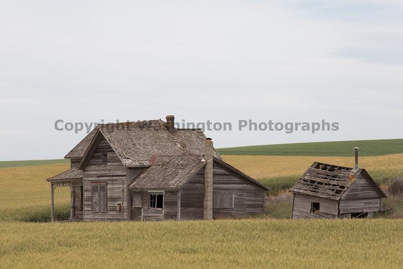 Abandoned House 439