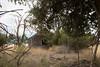 Abandoned House 406