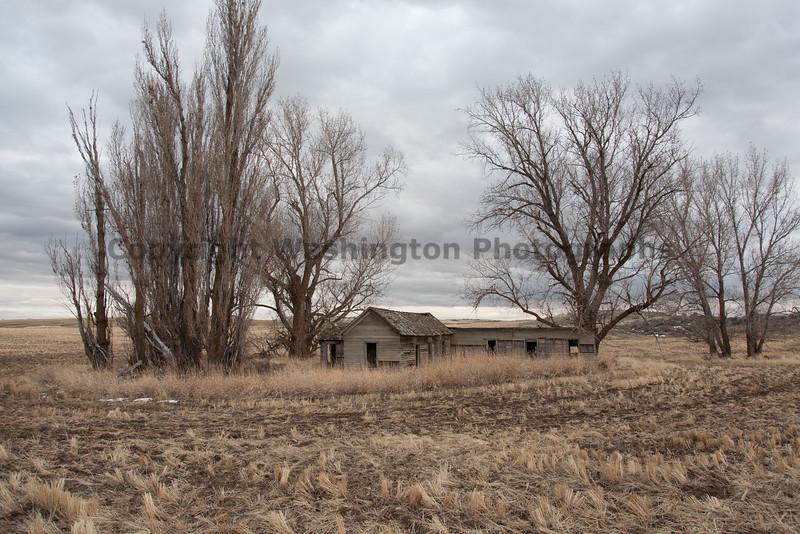Abandoned House 214