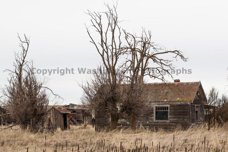 Abandoned House 048