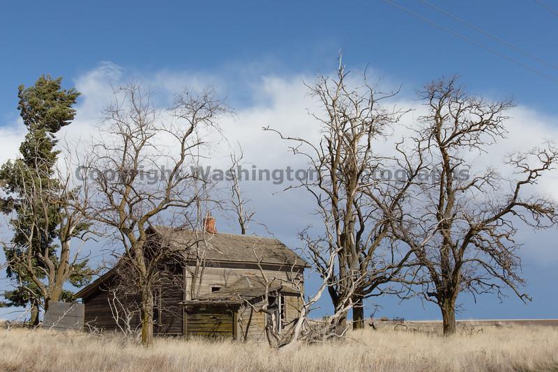 Abandoned House 207