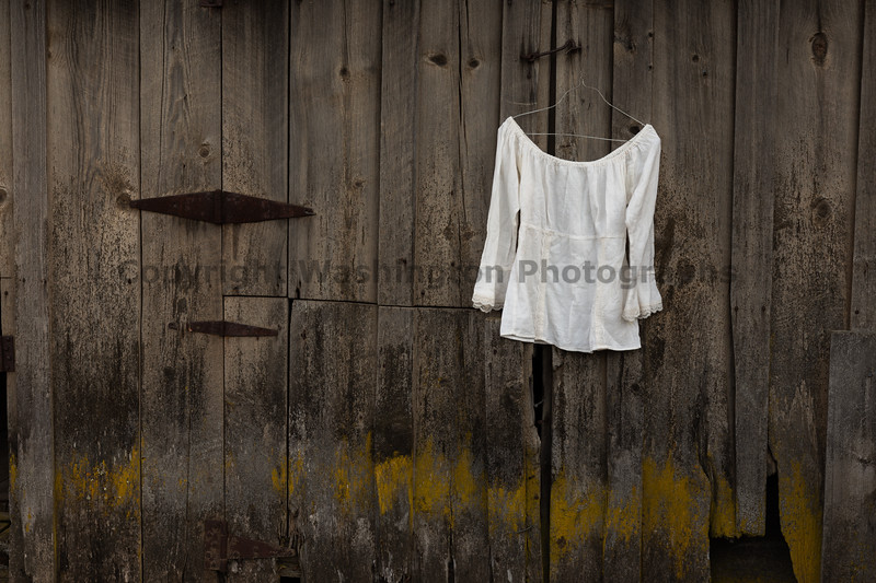 White Shirt 39