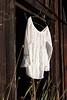 White Shirt 13