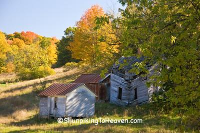 Abandoned Farm, Vernon County, Wisconsin