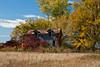 Farmhouse on Abandoned Homestead, Juneau County, Wisconsin