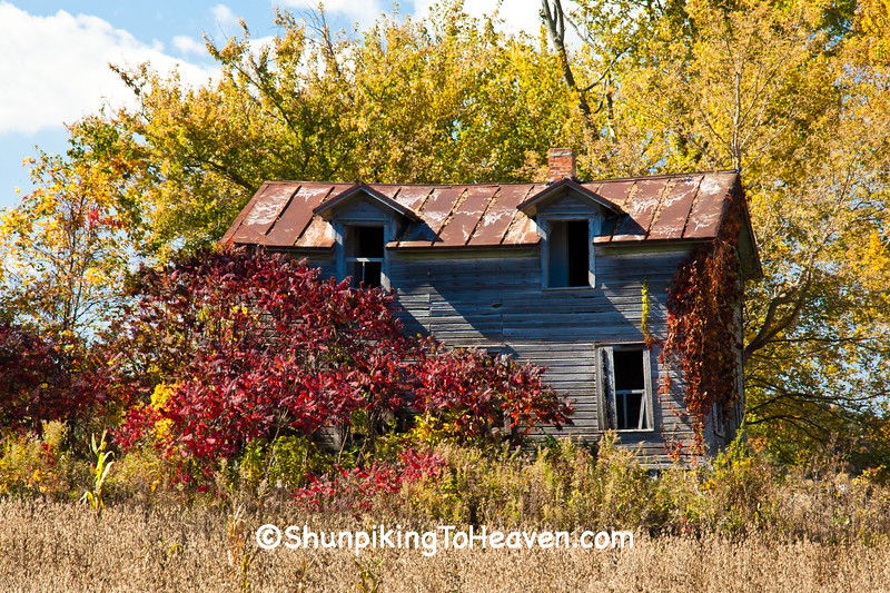 Farmhouse on Abandoned Homestead, Juneau County, Wisconsin