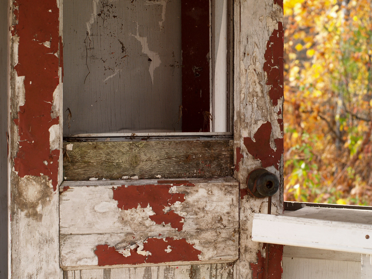 Decaying door of the Benson's ticket booth