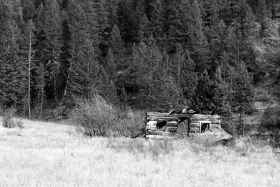 On Kootenay #3 Road. November 2011.