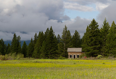 Near Invermere Airport. Summer 2011.