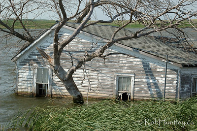 Derelict and swamped farmhouse on Hwy 46, east of Gackle, North Dakota.  This photo is a similar to an image Licensed through Getty Images. If you are interested in this specific image, please contact me to arrange for licensing through Getty Images.  © Rob Huntley