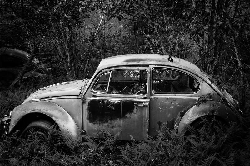 """Volkswagen """"Bug"""""""